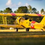 Bi-Plane - Lee Kluger